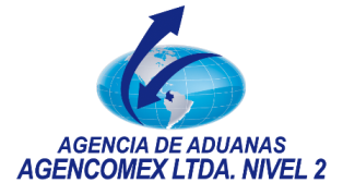 Agencia de Aduanas Agencomex Ltda. Nivel 2